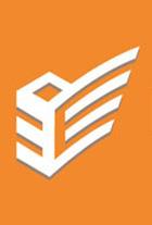 palletforce-symbol2